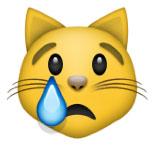 sad cat emoji